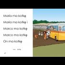 Illustrated Book (iBook / Kobo Edition) (Polish) (Download)